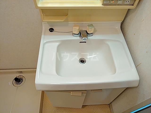 プライムホームズ 407号室の洗面所