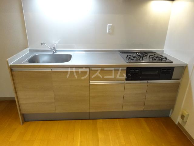 クレセントメゾンドール 202号室のキッチン