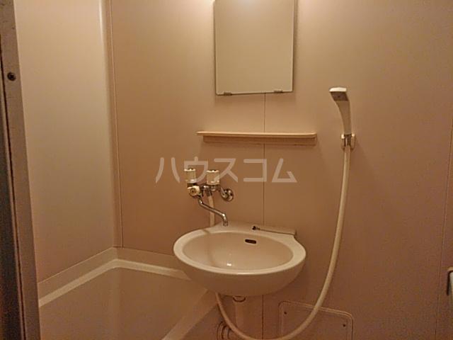 ヒルサイドメゾンA棟 102号室の洗面所