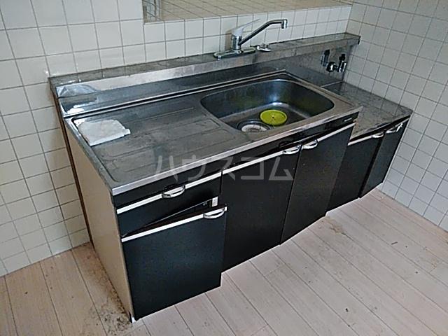 コーポラスシャロー 207号室のキッチン