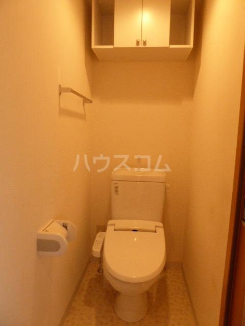 アイリス 203号室のトイレ