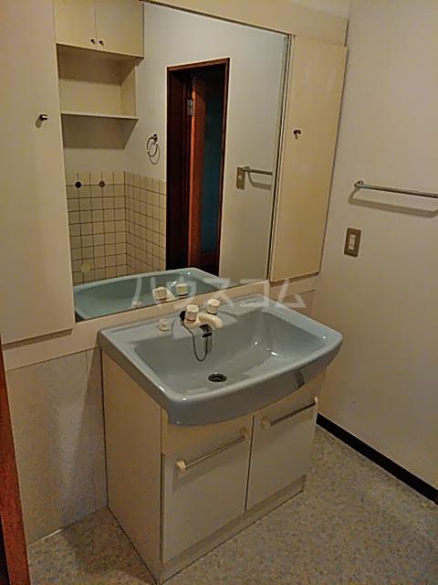 大和ハイツ1号館 102号室の洗面所