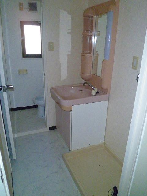 グランシャリオ 306号室の洗面所