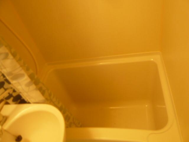 メゾンフジ 102号室の風呂