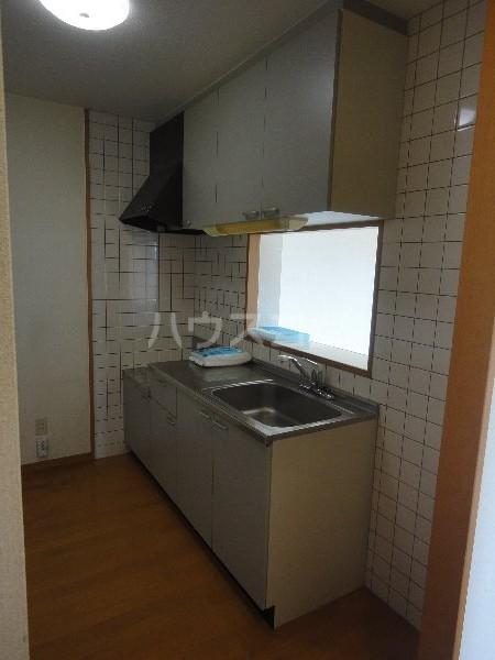 ボア ソルテ 105号室のキッチン