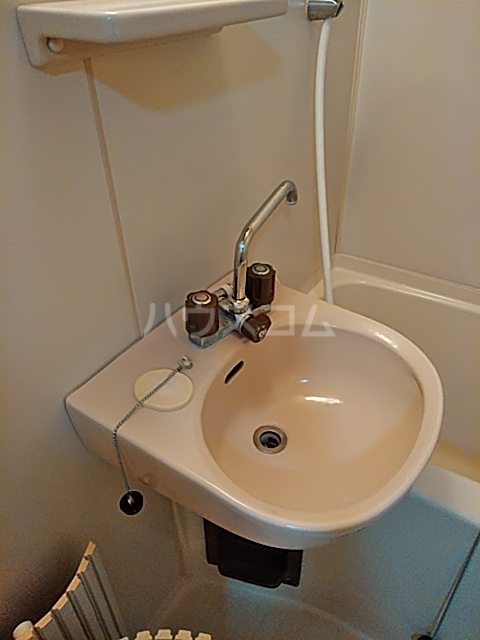 プレジール天王台 201号室の洗面所