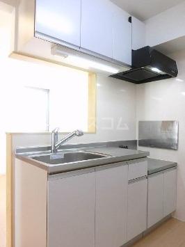 プラシード 02010号室のキッチン