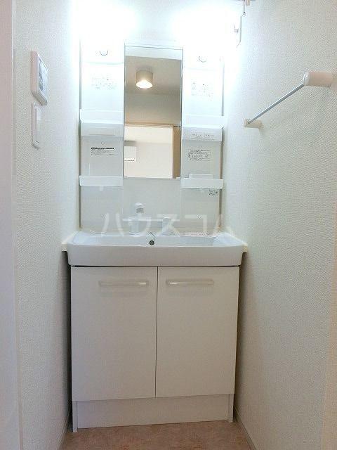 プラシード 02010号室の洗面所