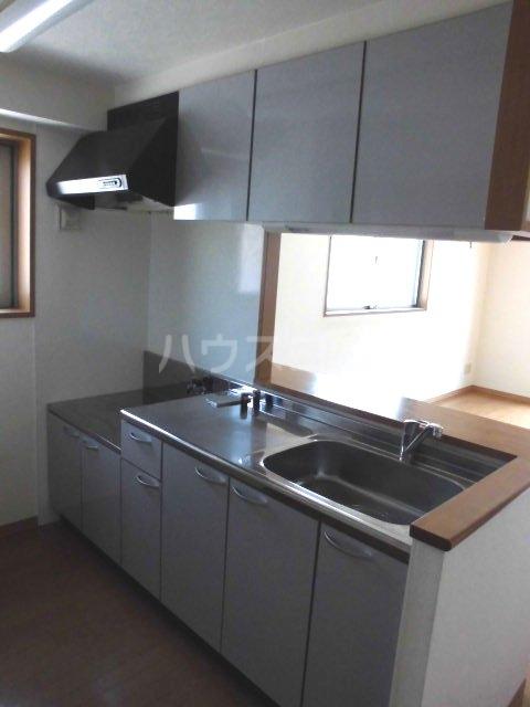 アントゥレ・ゼンザ 201号室のキッチン