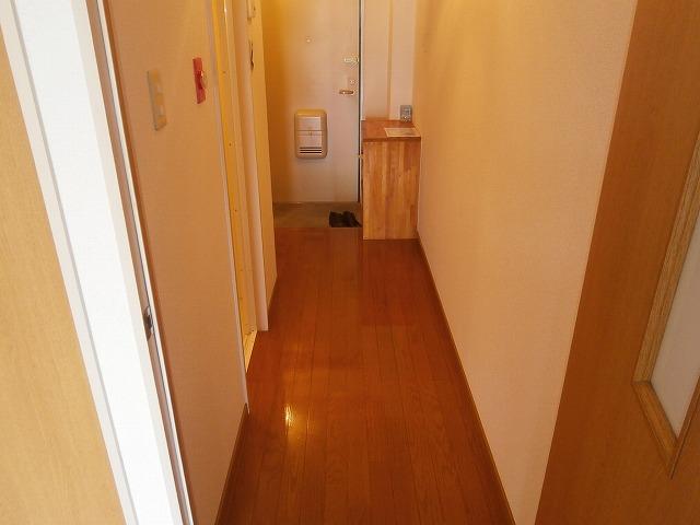 ゴールドマンション安井 418号室の玄関