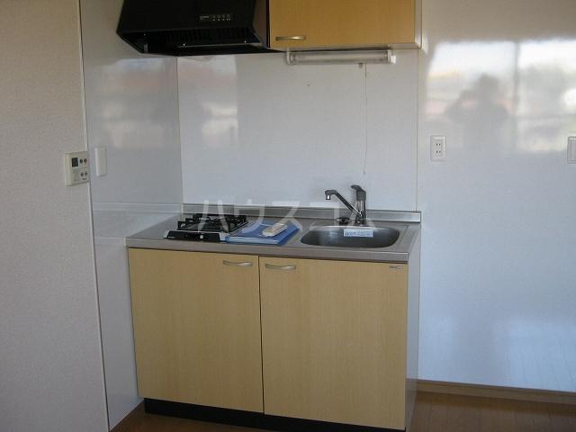 アドバンス落合 203号室のキッチン