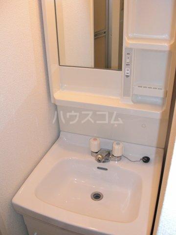 コンフォートプレイス 101号室の洗面所