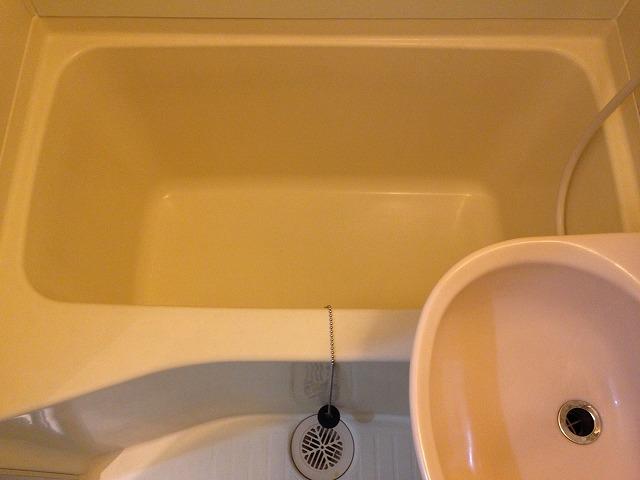 ラ・ブランシュ 202号室の風呂