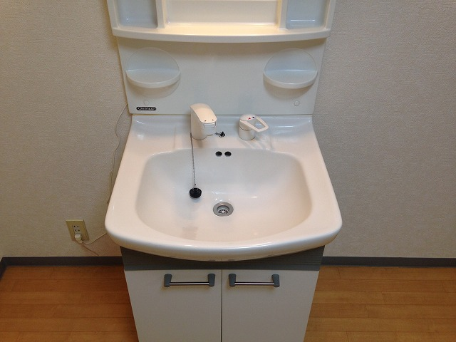ラ・ブランシュ 202号室の洗面所