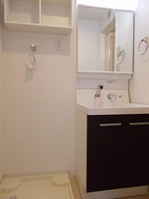 Belle Fleur 中板橋 04030号室の洗面所