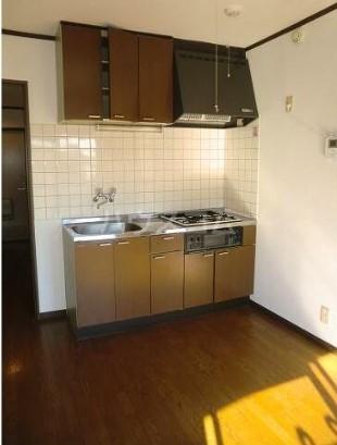 リュウハイム 301号室のキッチン