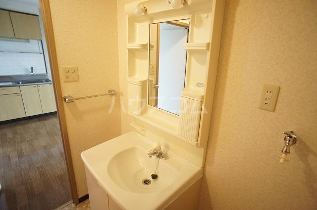 シャルマンA 02010号室の洗面所