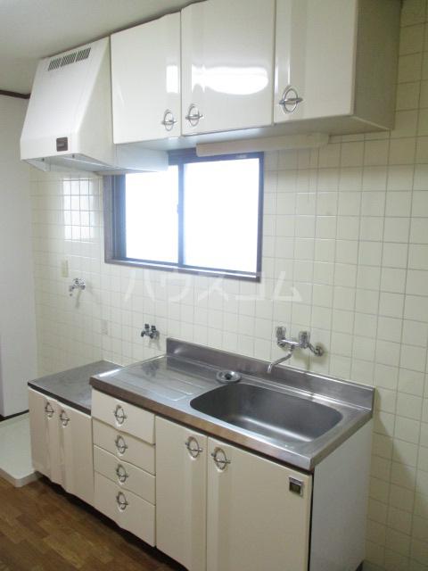 ブルースカイ峰 103号室のキッチン