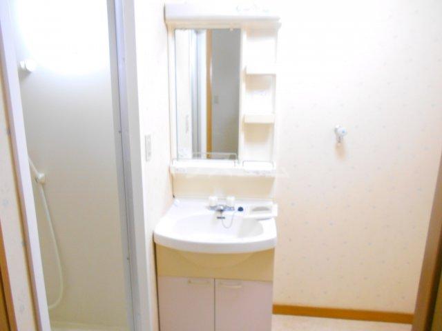 ラポゼ西久保 103号室の洗面所