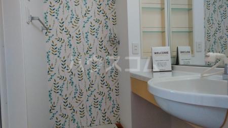 メゾン・ド・ソレイユA 101号室の洗面所