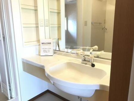 グランベルク A(栃木市) 202号室の洗面所
