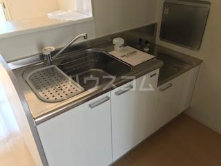 フォルトーナ 205号室のキッチン