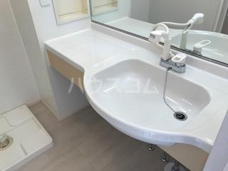 フォルトーナ 205号室の洗面所