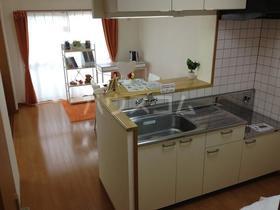 ユーミーマーベラス 304号室のキッチン
