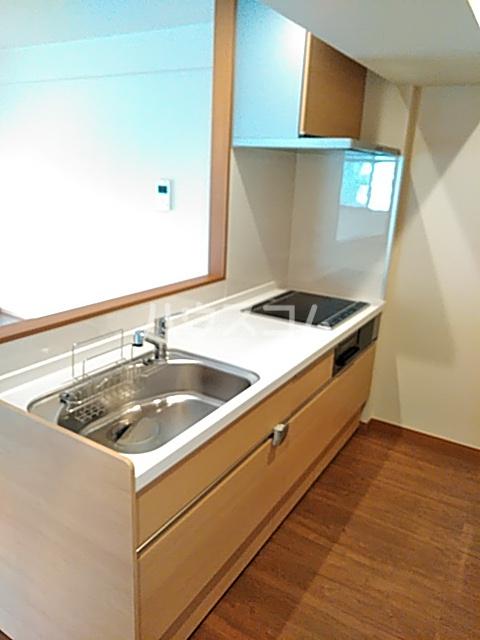 グランテージ東宿郷 202号室のキッチン