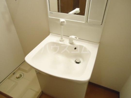 シェルルあずま 205号室の洗面所