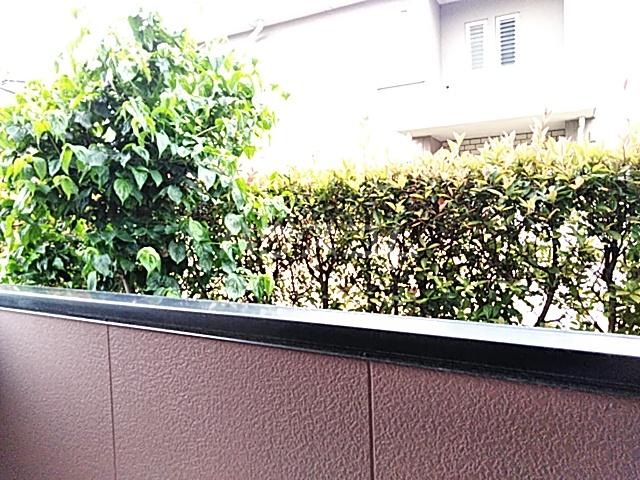 サンガーデン城東 B 101号室の景色
