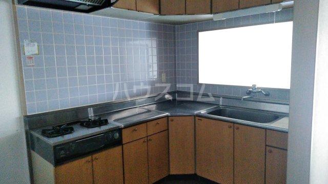 蔵の街マンション 202号室のキッチン