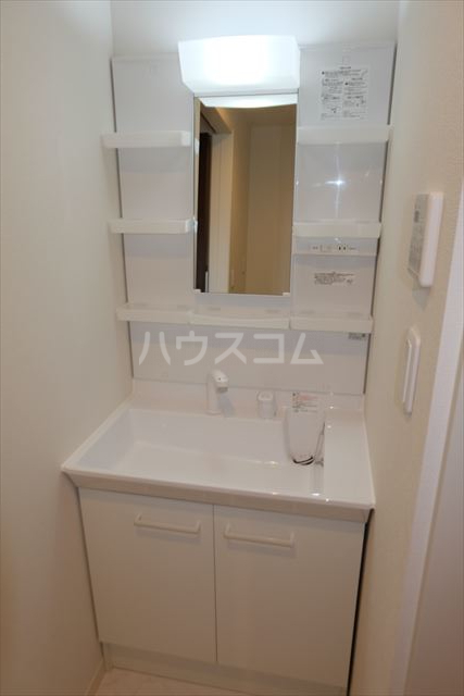 ラヴィーヌ芝の内A 103号室の洗面所