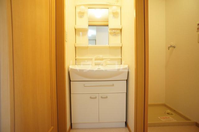 コンフォートB 01010号室の洗面所