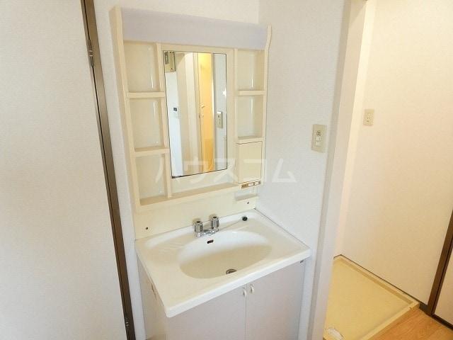 メモリーヒルズ 02010号室の洗面所