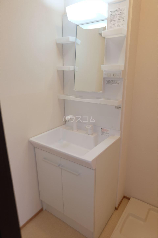 Riverain Ⅲ(リバレイン) 101号室の洗面所