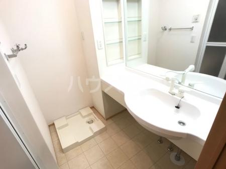 愛宕の杜 D 101号室の洗面所