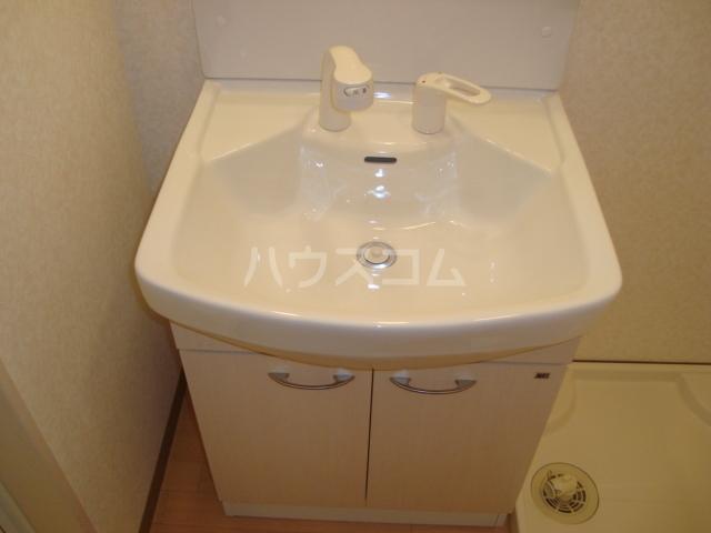 エスポアールB 206号室の洗面所