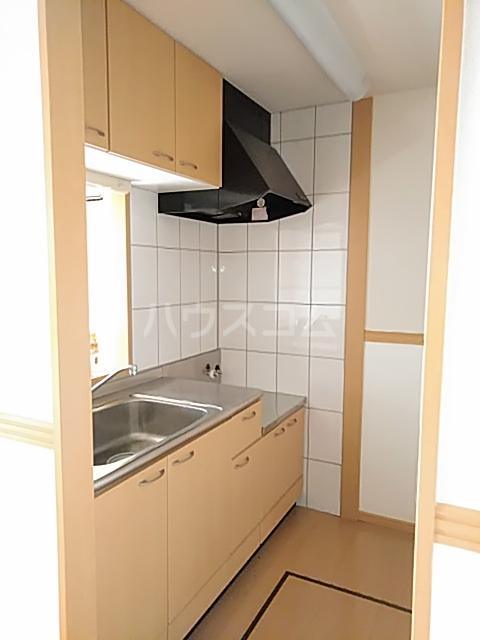 ペティハウスSelene 103号室のキッチン
