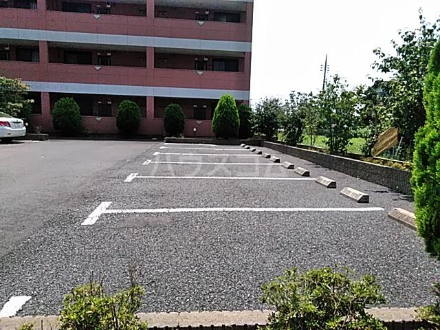 ペティハウスSelene 205号室のセキュリティ
