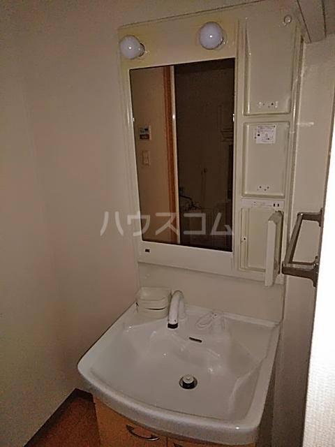 ペティハウスSelene 205号室の洗面所