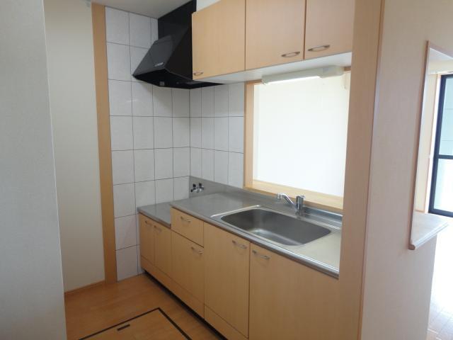 Flora iwata(フローラ イワタ) 103号室のキッチン