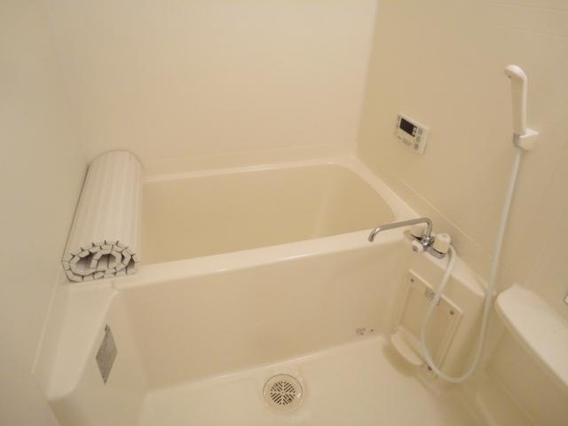 Flora iwata(フローラ イワタ) 103号室の風呂