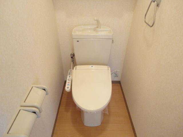 Flora iwata(フローラ イワタ) 103号室のトイレ