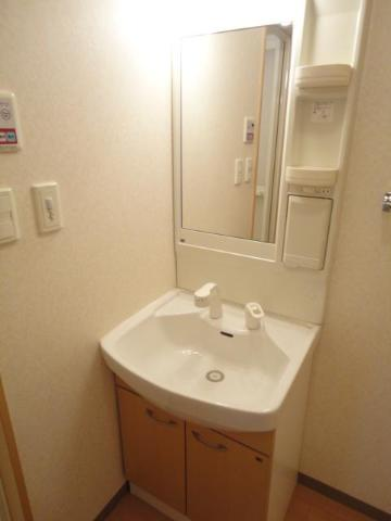 Flora iwata(フローラ イワタ) 103号室の洗面所