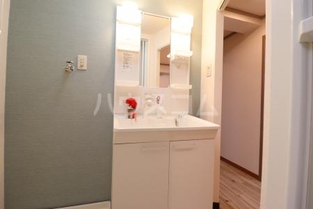 栄マンション 205号室の洗面所