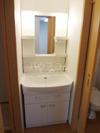 ラフィナート・パレ C 01020号室の洗面所