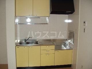 エバーグリーンハイツ Ⅲ 102号室のキッチン