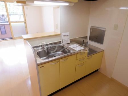 ダイヤファースト天久保 106号室のキッチン
