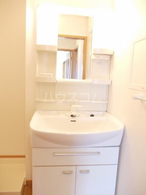 カーサ パストラル 02030号室の洗面所
